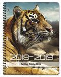Tiger Profile - Academic Planners Plus
